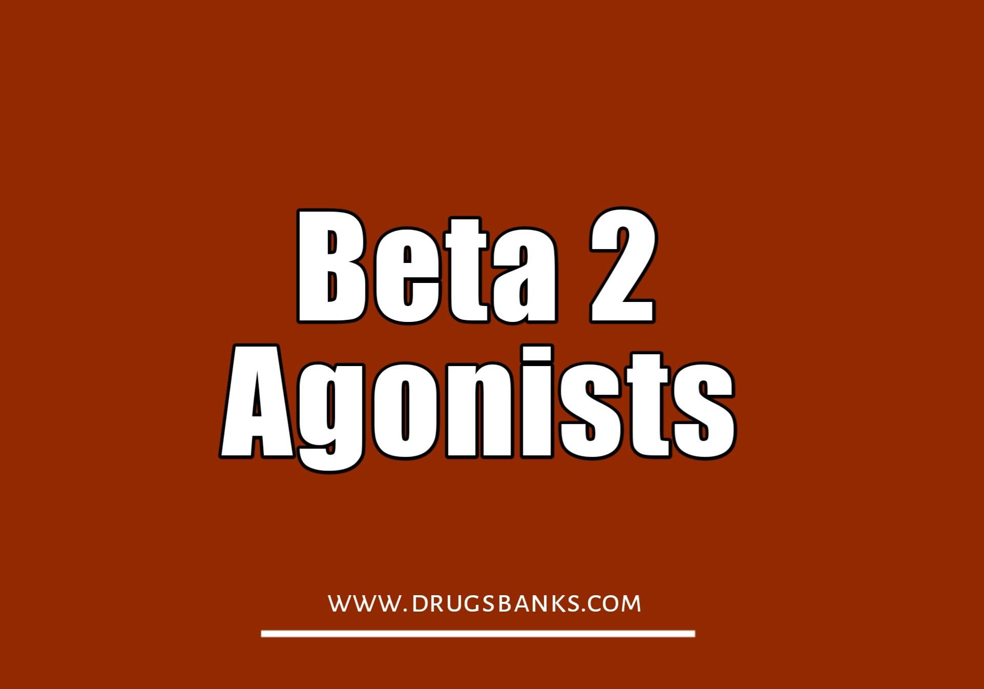 Beta 2 Agonist