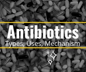Antibiotics: Types, Uses, Mechanism