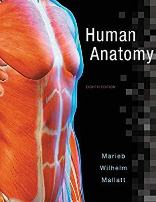 10 Best Anatomy Books (Buyers Helpful Guide) – DrugsBank