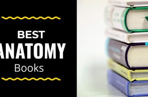Best anatomy books